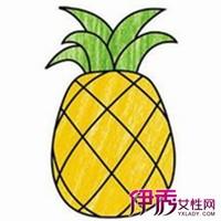 菠萝图片简笔画