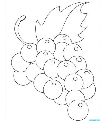 水果简笔画图片大全涂色