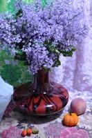 美丽的丁香花-,摄影作品静物系列