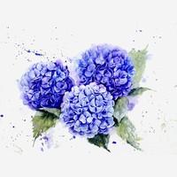 花球手绘水彩蓝色丁香花插画免抠