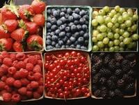 莓类水果图片大全
