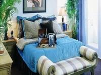 卧室盆栽风水:卧室放什么盆栽好