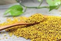 油菜花粉的功效与作用及食用方法