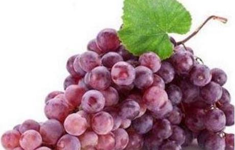 吃葡萄的好处与功效,什么人不适合吃