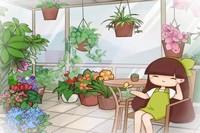 这9种花,放室内就能养成窗帘,比绿萝吊兰好看多了!