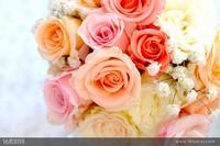 简约唯美玫瑰花束图片大全