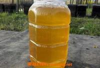 油菜花蜜的功效与作用 油菜花蜜的副作用