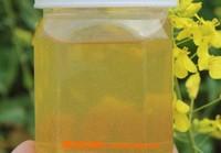 油菜花蜂蜜的功效与作用 油菜花蜂蜜是凉性的吗