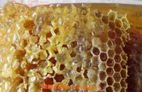 黑蜂巢蜜的作用与功效及食用方法
