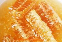 土蜂蜜的作用与功效 土蜂蜜什么时候喝最好