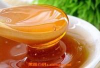桉树蜜的作用与功效 桉树蜜的食用方法