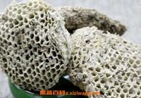 蜂房的功效与作用 蜂房的食用方法