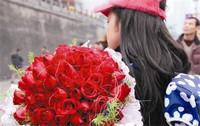 女孩手捧玫瑰花图片
