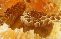 合欢蜂胶的功效与作用 吃合欢蜂胶的好处
