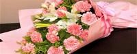 粉色康乃馨花语是什么