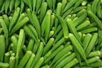 秋葵种植成本和利润,千元成本万元利