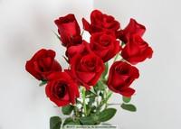红玫瑰花图片大图