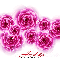 一支玫红玫瑰花图片