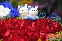 情人节玫瑰花熊图片