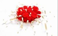 情人节玫瑰花图片大全