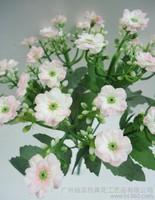 粉色米兰花图片