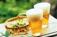 水培植物啤酒可以代替营养液吗,不可