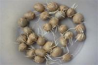 山药豆发芽了还能吃吗,不建议食用容易出现腹泻