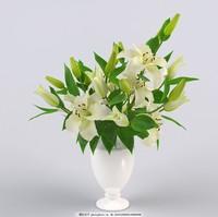 百合花盆栽图片大全
