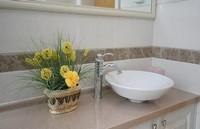 卫生间摆放什么花好:卫生间摆放花卉最佳选择是观叶植物