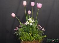 花店鲜切花养护的方法很重要