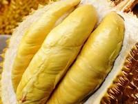 榴莲一次吃多少合适,榴莲什么时候吃最好(早上)