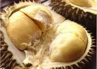 榴莲里面的白色能吃吗,榴莲里面的核能吃吗(都能吃)