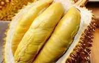 榴莲吃不完怎么保存,吃剩下的榴莲肉保存方法(5种)