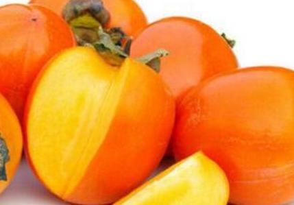 柿子的功效与作用,吃柿子有什么好处和坏处
