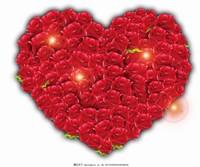 玫瑰花心形图片大全