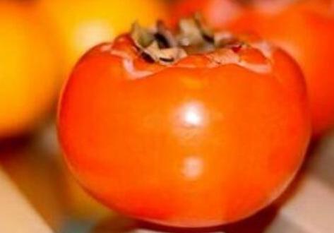 柿子和牛乃能一起吃吗,柿子和牛乃一起吃会中毒吗