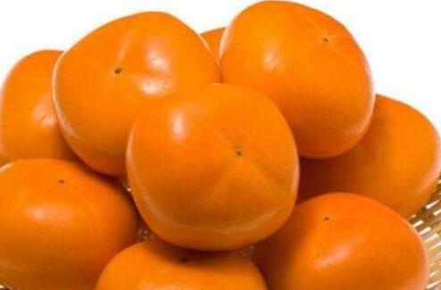 柿子能治病吗,柿子的药用价值
