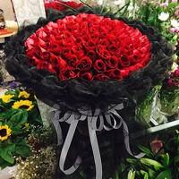 99支红玫瑰花束图片大全