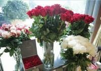 情人节送什么花