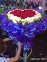 超漂亮的玫瑰花图片99