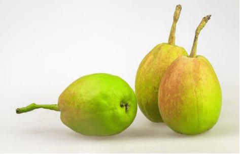 怀孕初期可以吃香梨吗?孕妇吃香梨竟然有这种好处?
