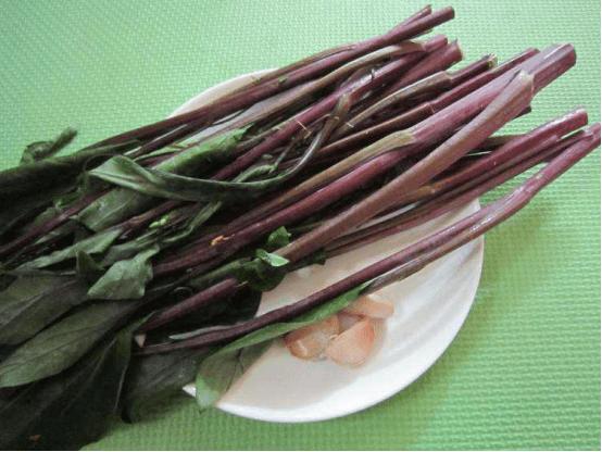 红菜苔叶子能吃!吗?为你介绍红菜苔