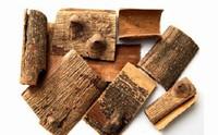 海桐皮的功效与作用:祛风除湿,利水和中,杀虫止痛