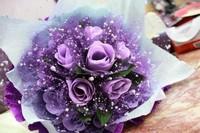 最漂亮的紫色玫瑰花图片