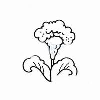 植物画图片简单画法