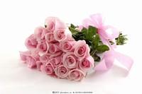 鲜花玫瑰花图片