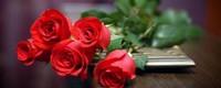 五支玫瑰花代表什么意思