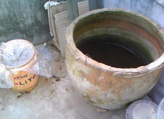 怎样使用硫酸亚铁肥料:腐植酸整合,或