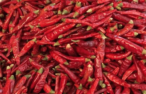 小米椒辣椒酱的做法?教你做最美味