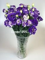 龙胆花盆栽图片